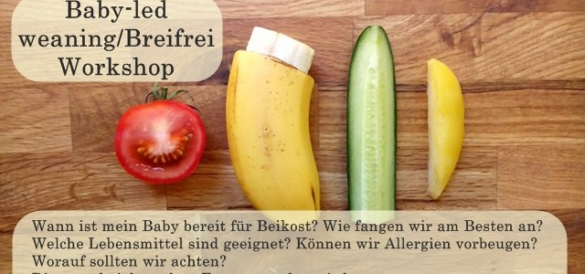 Beikost-Workshop: Baby-led weaning/Breifrei im Hug and Grow